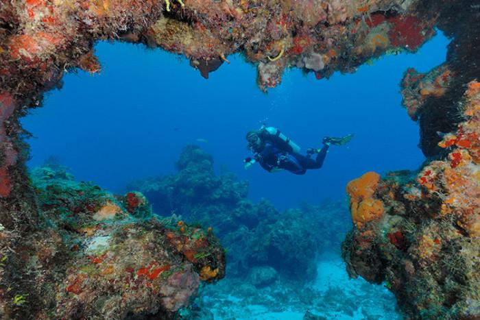 Certified diving